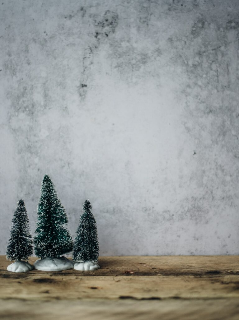 make your Christmas more meaningful